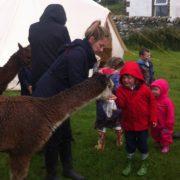 Children meeting our alpacas